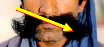 Unacceptable - very long moustache