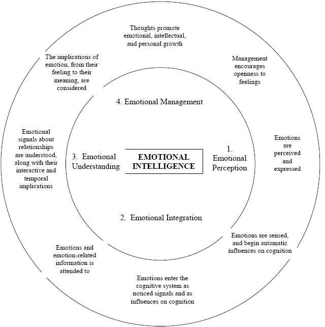 Essays on emotional intelligence