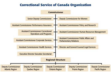the growth of adult corrections in Answer to background: the growth of adult corrections in the united states is a critical issue for the correctional administrator as evidenced by a number of.